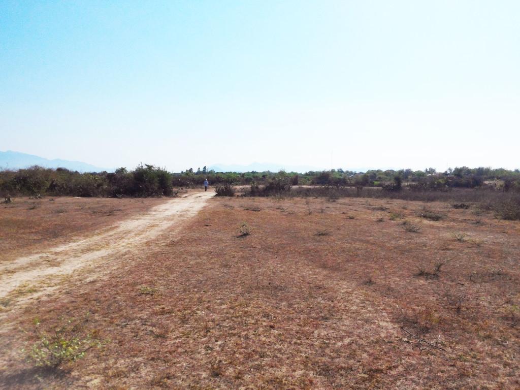 Mảnh đất dự định xây